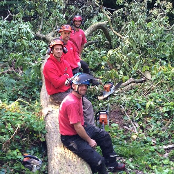 Gordano Tree Care team